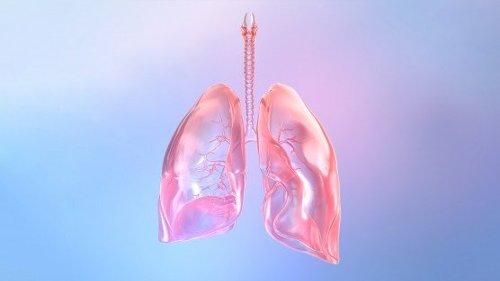 Inhaled CRISPR Treatment Tackles COVID-19, Flu