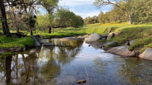 Protected Sierra foothill land is growing. Where to hike in the hills and help conservation