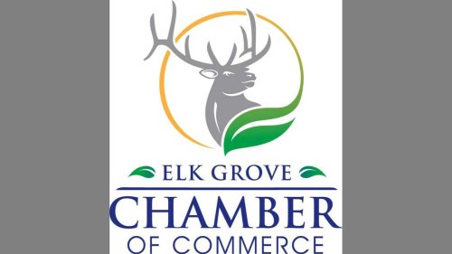 Boosting numbers of Black- and brown-owned businesses is topic of Elk Grove Chamber forum