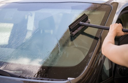 How to Protect Your Car from Insect Damage and Remove Bug Guts from the Windshield | Frommer's