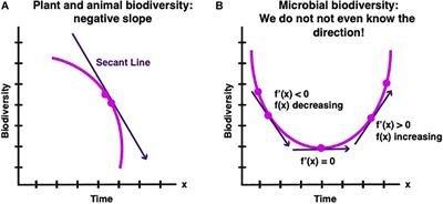 Is Global Microbial Biodiversity Increasing, Decreasing, or Staying the Same?