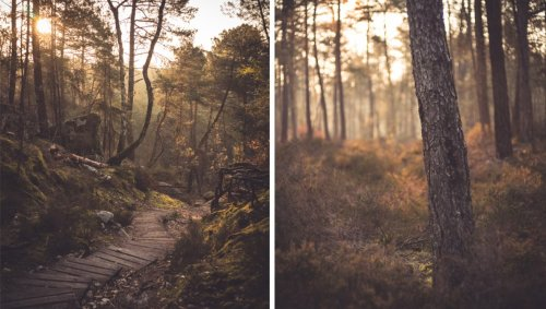 Why Would You Become a Landscape Photographer if You Don't Like Landscape Photography?