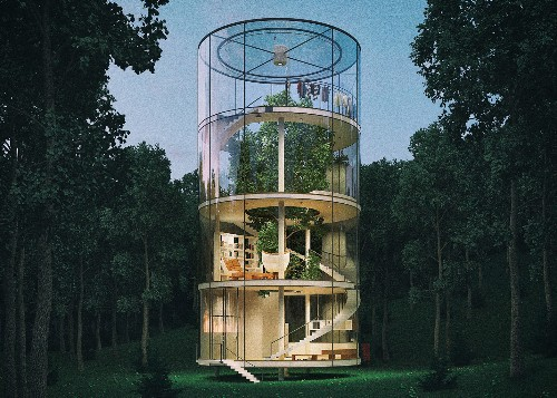 A House Built Around a Tree