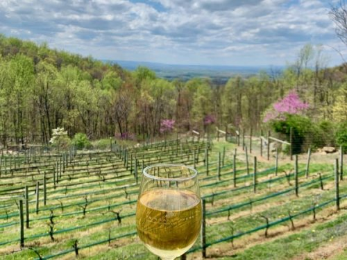 8 Awesome Hike and Wine Day Trips Near Washington DC