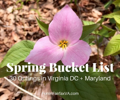 Spring Bucket List: 30 Fun Outings in Virginia DC and Maryland