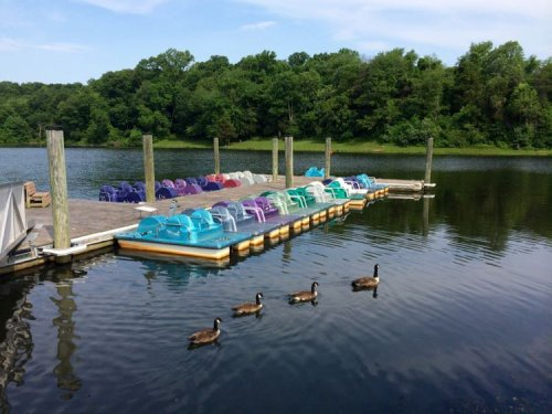 21 Fun Family-Friendly Parks with Trails in Northern Virginia