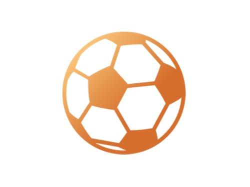 🥇 APOSTAS ONLINE - Notícias de Futebol Brasileiro e Internacional