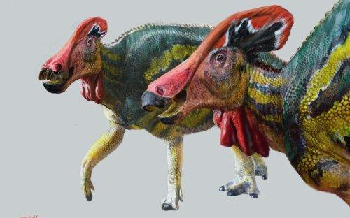 Cette nouvelle espèce de dinosaure était très bavarde !