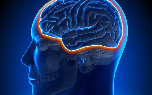 Le coronavirus entraine l'apparition de vaisseaux fantômes dans le cerveau