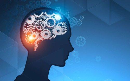 Des progrès dans l'identification de l'empreinte cérébrale !