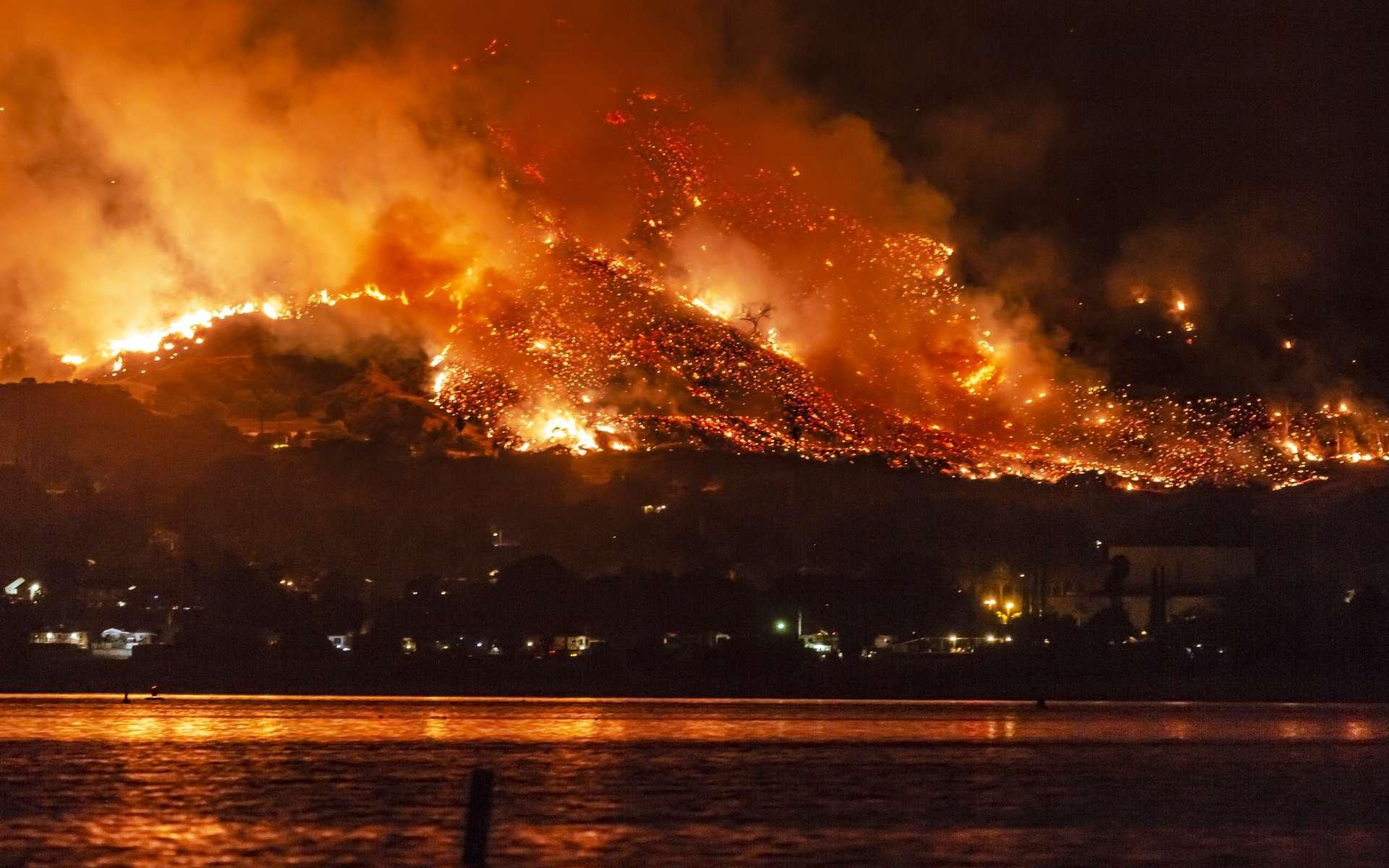 Les feux de forêt dureront 10 ans... et déclineront