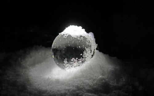 La glaciation de la Terre, un coup de pouce pour la croissance des organismes unicellulaires ?
