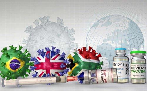 Pourquoi un taux de vaccination élevé peut paradoxalement favoriser l'émergence de variants résistants ?