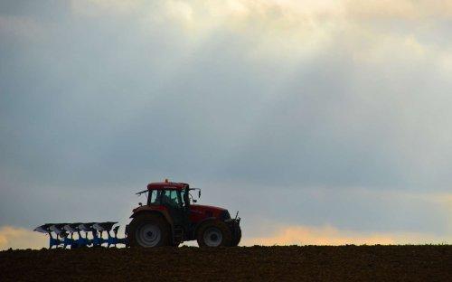 Pour nourrir la Planète, il y aurait plus efficace que l'agriculture