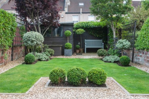 Want your lawn to look great ? Here's what you need to do now