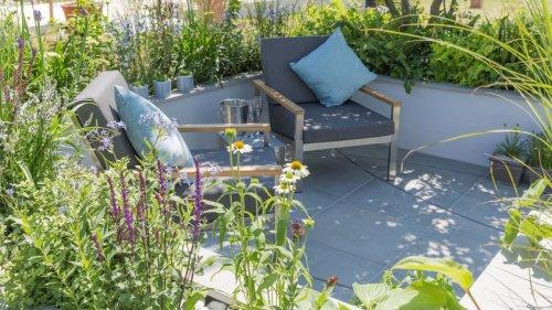 Rain gardens: 10 stunning ideas and designs that soak up rain run-off