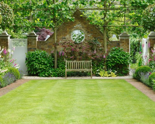 How to get the perfect lawn – and the MISTAKES you're making
