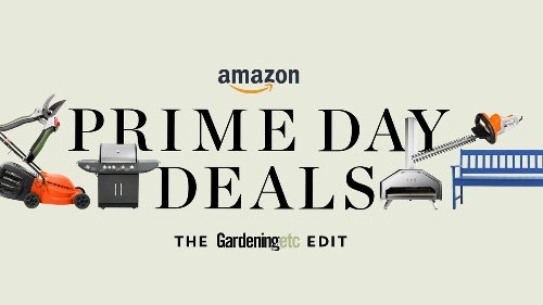 Amazon Prime Day 2021: Check out the deals — happening now!
