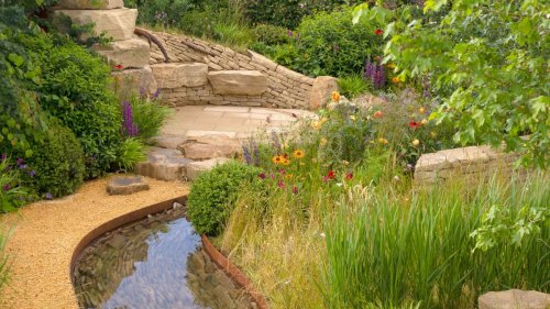 25 ways to transform your plot into a nature-friendly space