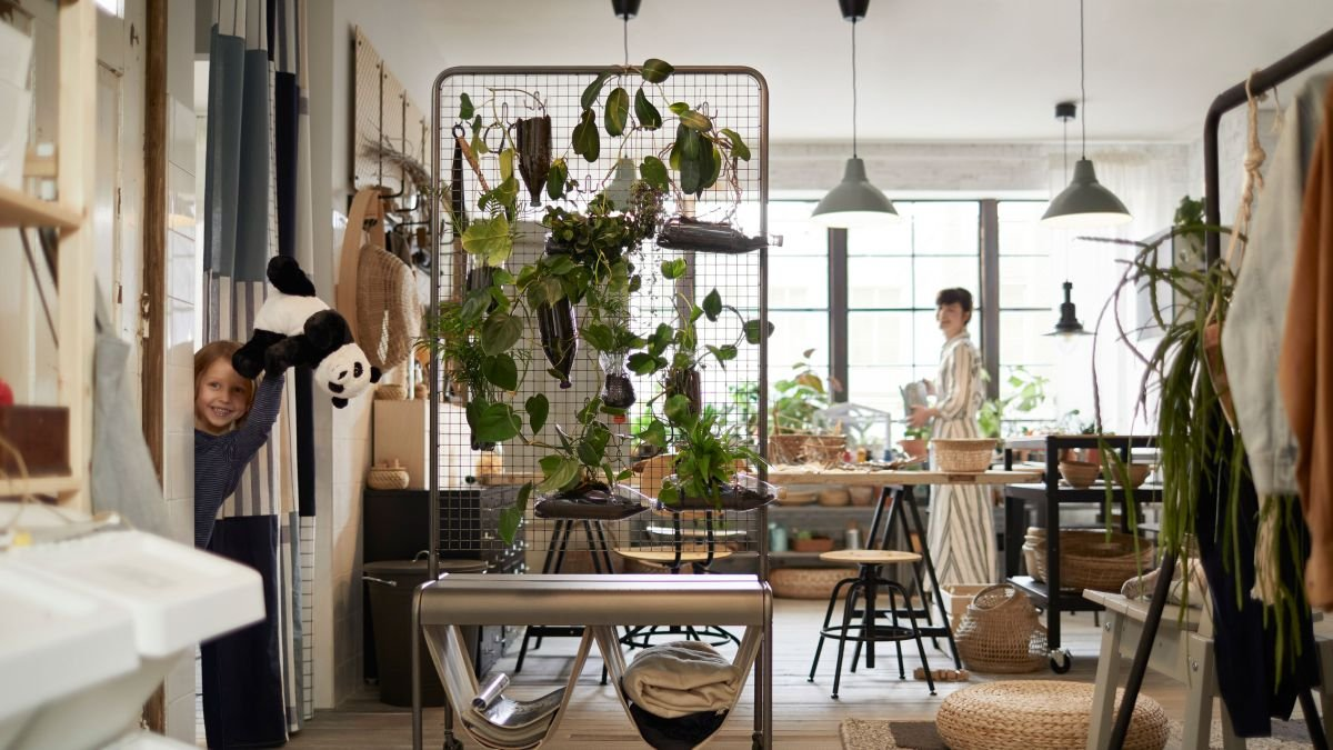 Houseplant tips: 6 ways to care for your indoor garden 