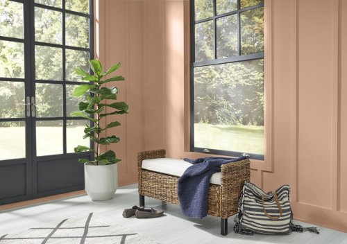 Experts are calling this paint shade the next Millennial Pink