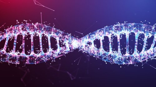 How does DNA know which job to do in each cell?