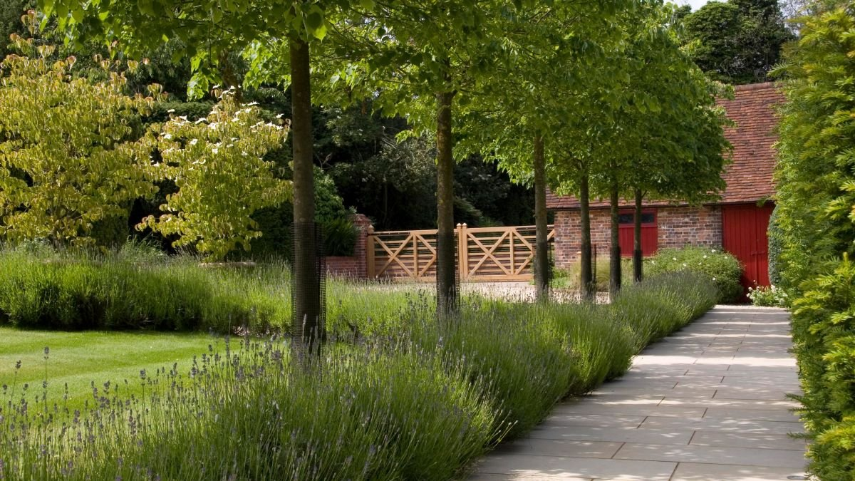 10 stunning ways to bring trees into your plot