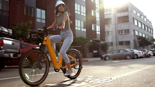 This tough e-bike has an 80-mile range and is much cheaper than you'd expect