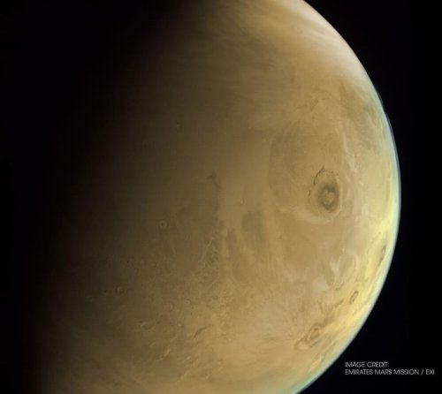 Welcome to Mars! Bill Nye and Robert Zubrin hail new Red Planet visitors.