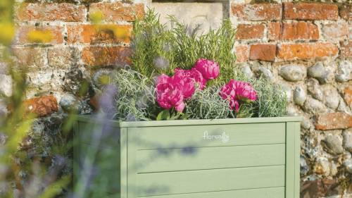 Gardening expert reveals tip for growing herbs and it costs nothing