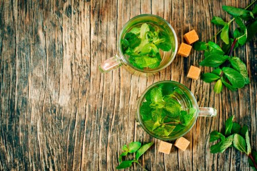 How to grow mint: this refreshing herb is one of the easiest to grow