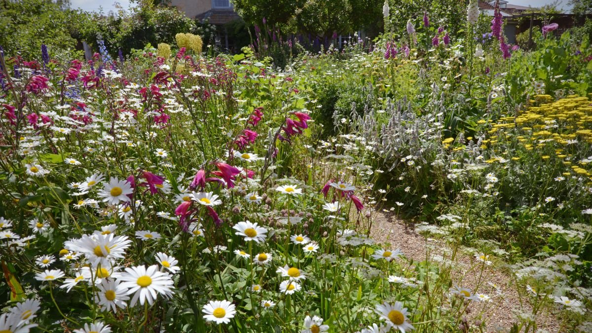 Create the cottage garden of your dreams with these tips - cover