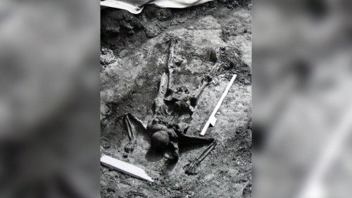Roman-era skeleton found near Mount Vesuvius may be from famous rescue mission