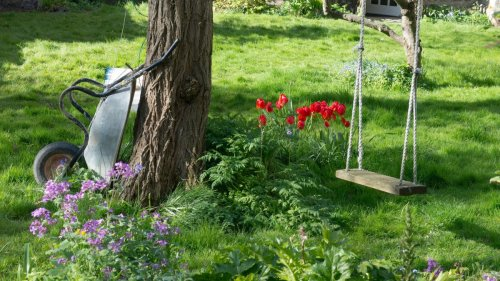 How to hang a tree swing: advice for safely securing a swing from a branch