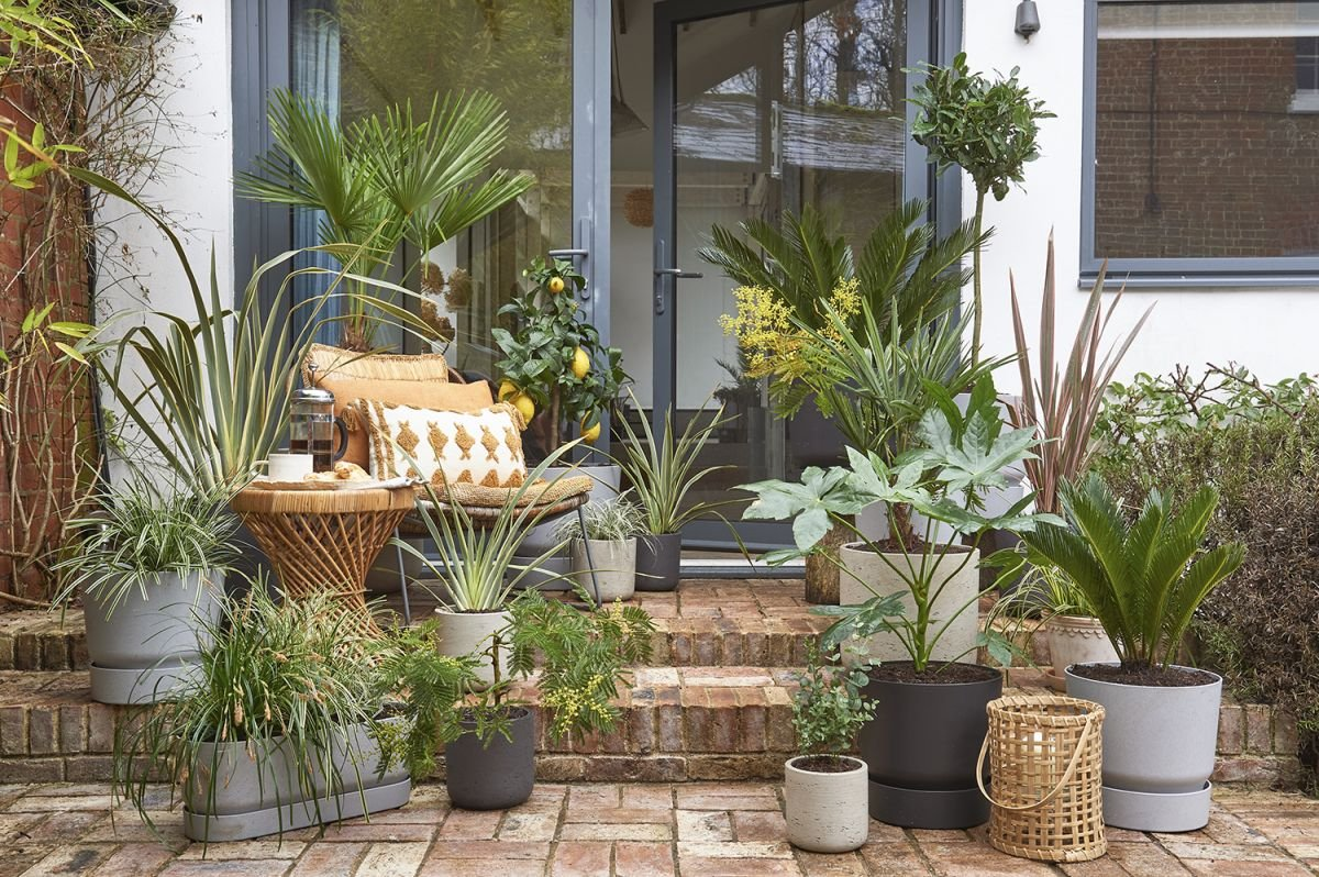 This is how to max out on style in a small garden