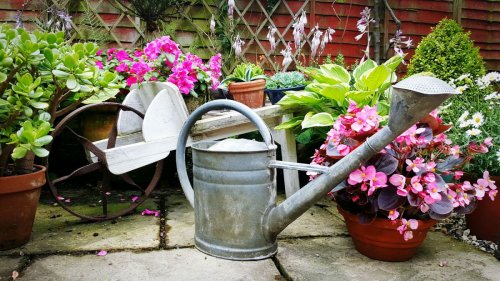 The RHS is calling on gardeners to switch from 'mains to rains' this summer to save water