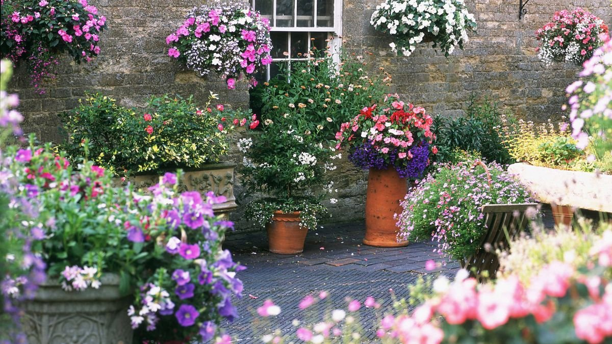 19 container planting designs for year-round colour and scent
