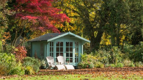 Prepare your garden for winter with these expert tips