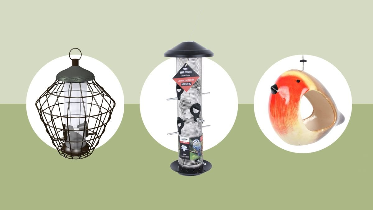 The best bird feeders: attract feathered visitors to your outdoor space