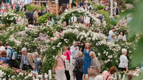 The virtual Chelsea Flower Show 2021 is just around the corner