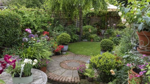 Landscaping ideas cover image