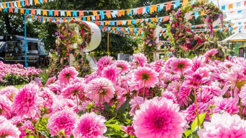 The RHS Hampton Court Flower Show 2021: a complete guide