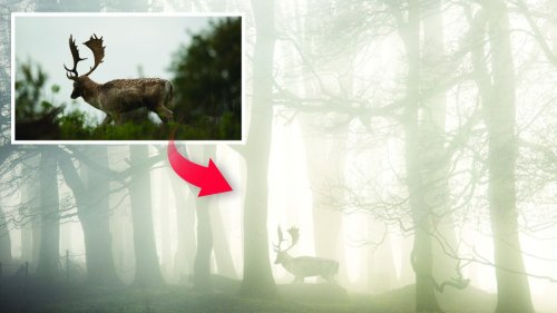 Merge two photos in Photoshop CC to create a landscape with a striking focal point