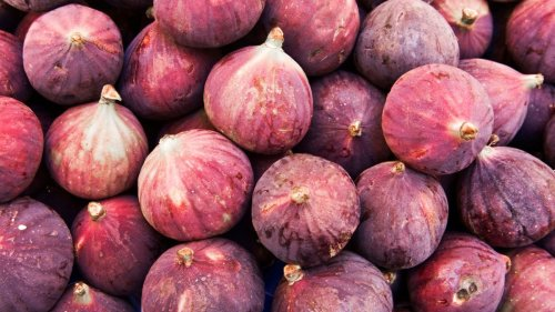 How to grow figs: expert tips on planting, growing and harvesting