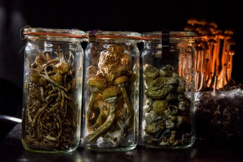 'Magic mushroom' compound may work just as well as antidepressants, small study finds
