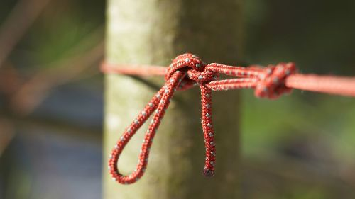 The best knots for camping and hiking: for rigging shelters, repairs, hanging hammocks and more