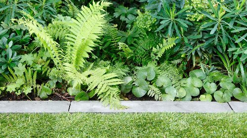 12 stylish ways to border your lawns, flowerbeds and paths