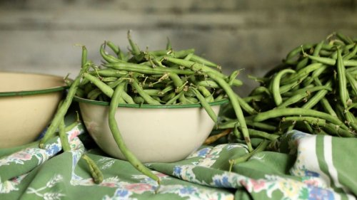 Monty Don's French bean growing tips will ensure a bumper crop