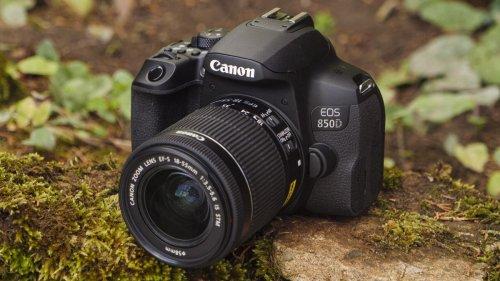 Best beginner DSLR cameras 2021: 10 finest choices for new photographers