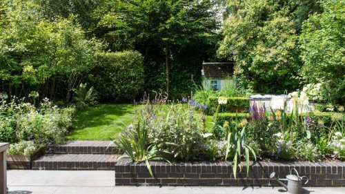 Gardening expert reveals the best time of day to get rid of weeds easily